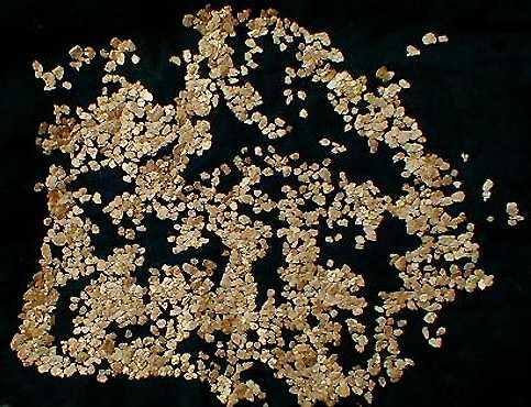 Le pagliuzze d'oro della Bessa